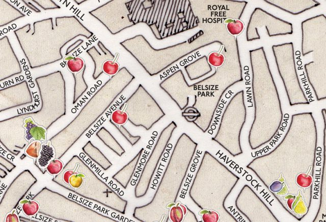 Transition-Belsize-Map-zoomed